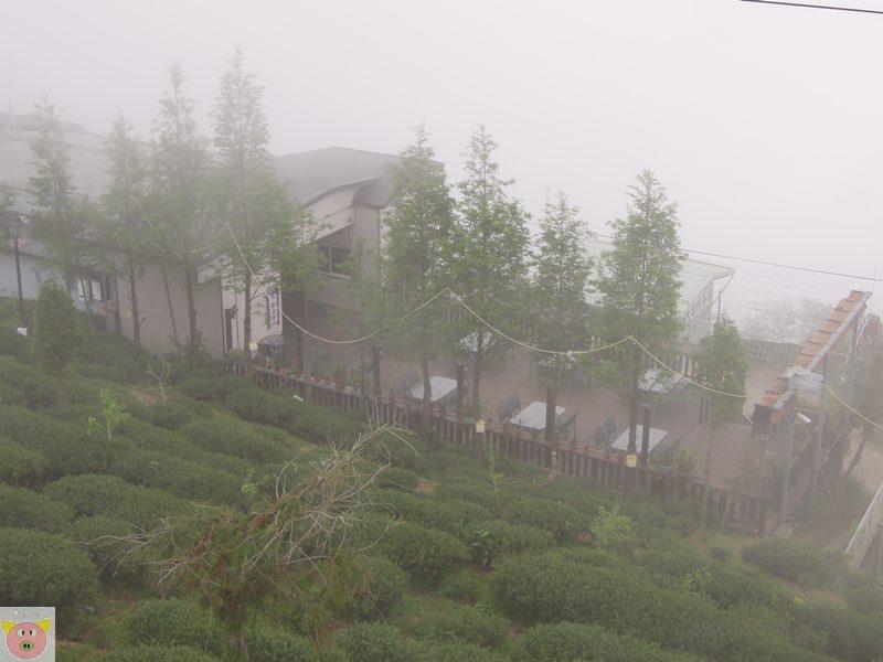 文景露營162.JPG