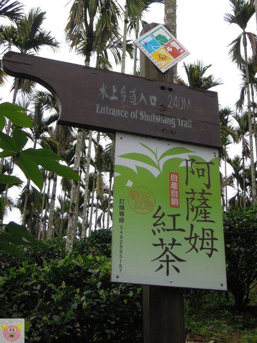 灰熊愛露營139.JPG