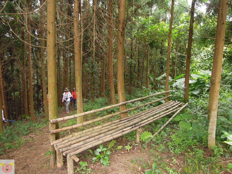 新櫻之都露營116.JPG