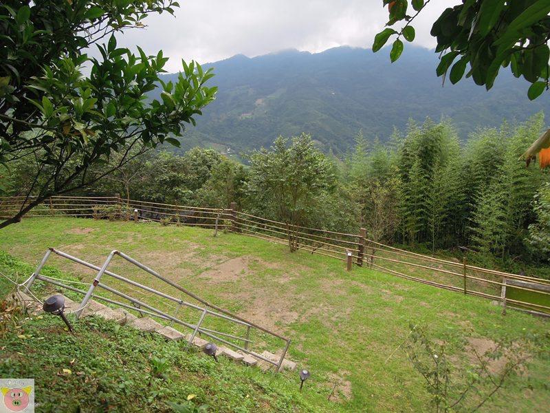 新櫻之都露營124.JPG
