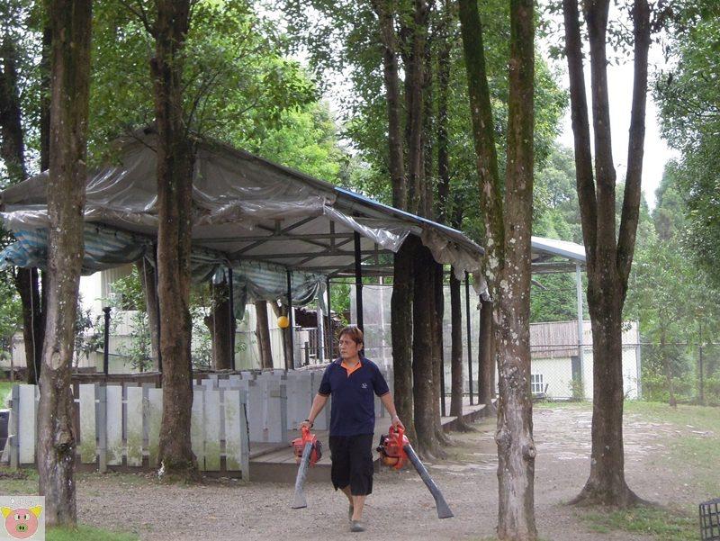 新櫻之都露營175.JPG