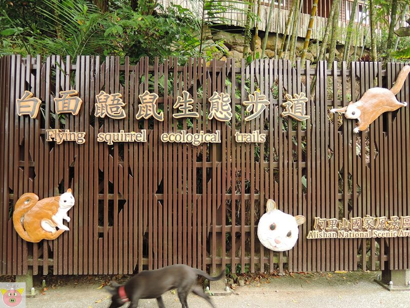 湘泉露營055.JPG