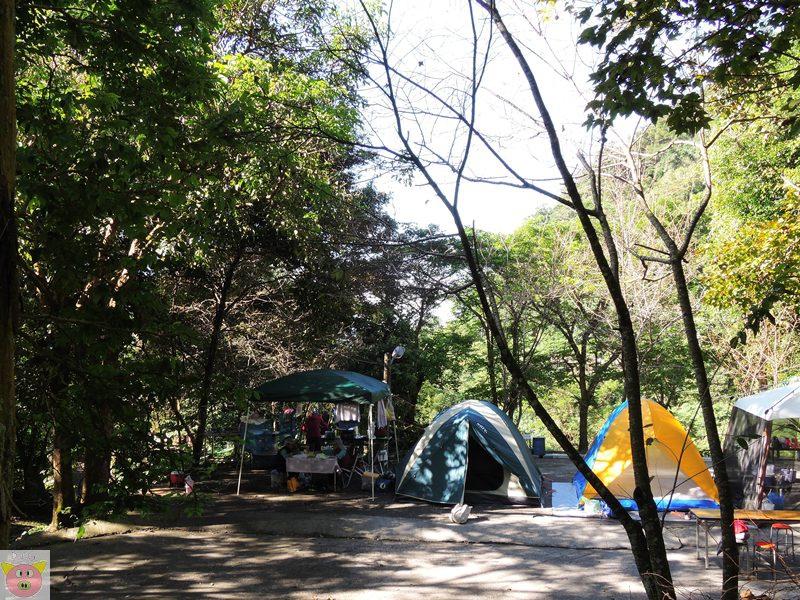 湘泉露營100.JPG