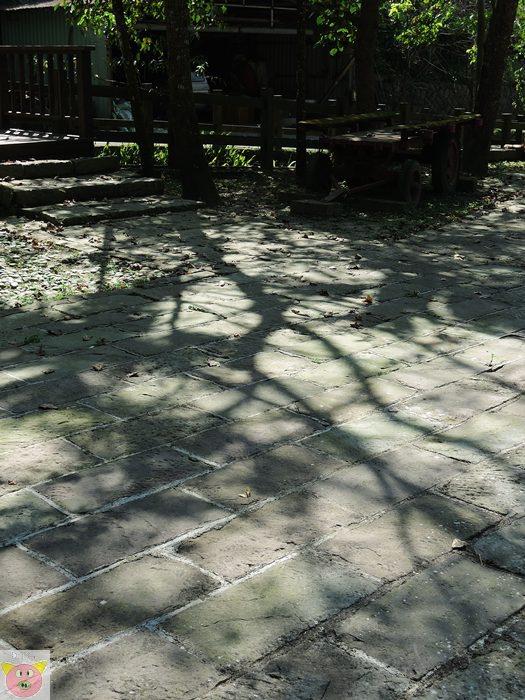 湘泉露營139.JPG