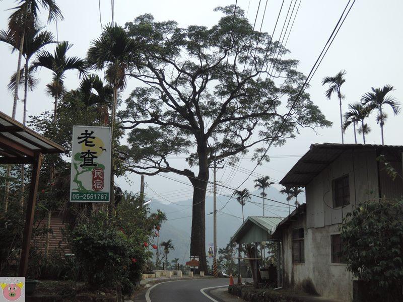 湘泉露營159.JPG
