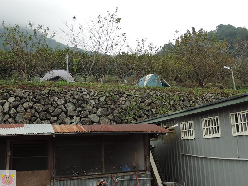 恩福露營DSCN4263.JPG