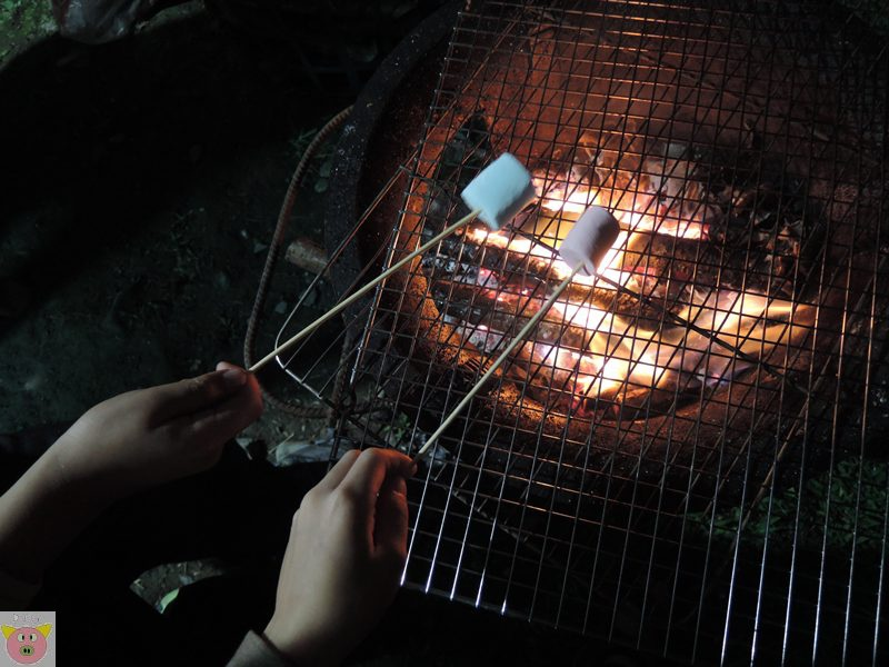 恩福露營DSCN4347.JPG