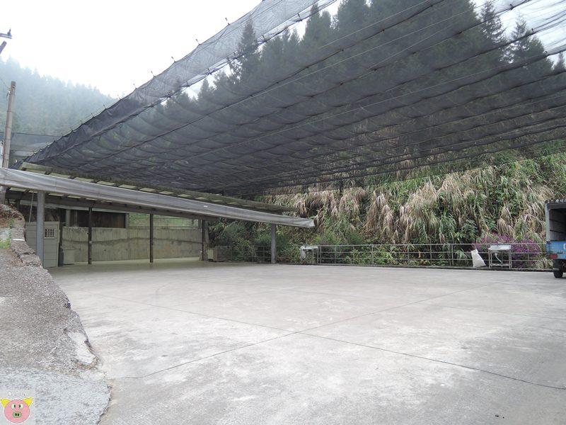 竹土亢DSCN8697.JPG