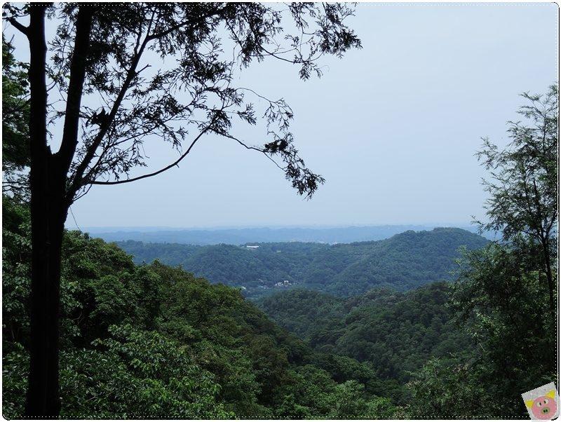 山居蘭園DSCN2207.JPG