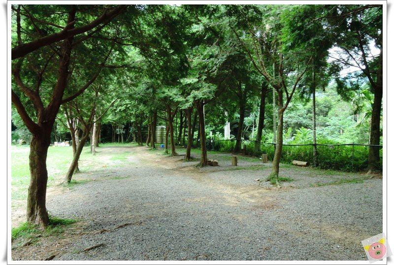 清景DSCN4314.JPG