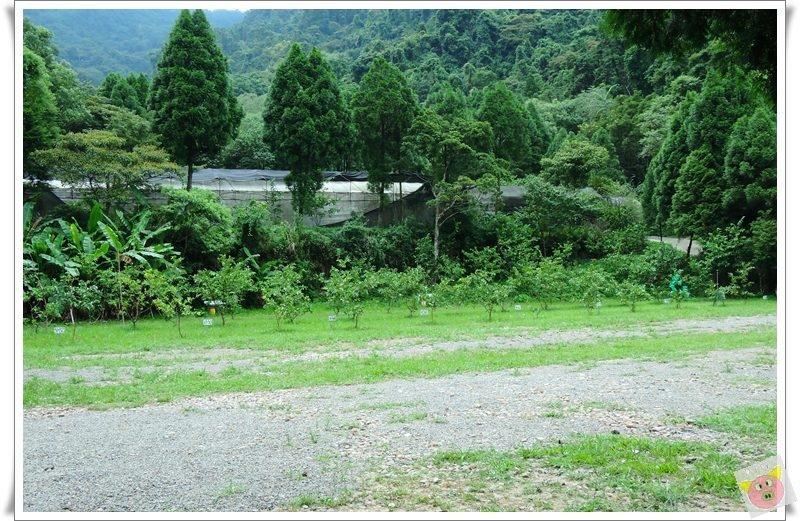 清景DSCN4316.JPG