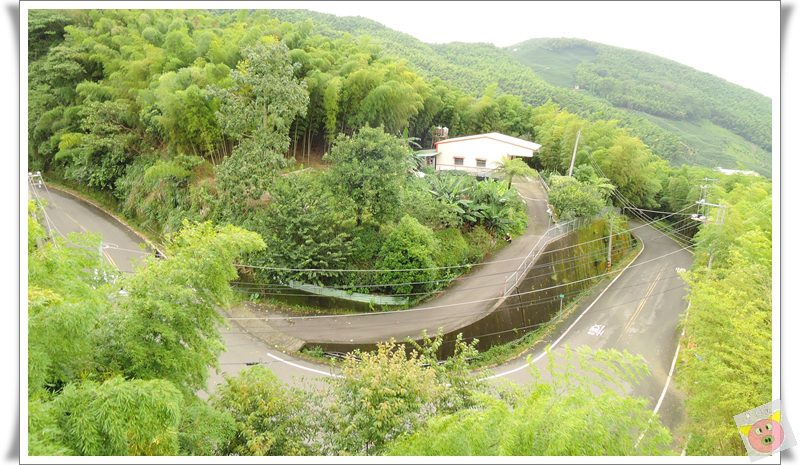 竹內DSCN4464.JPG