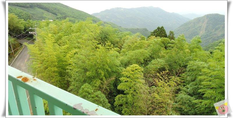 竹內DSCN4466.JPG