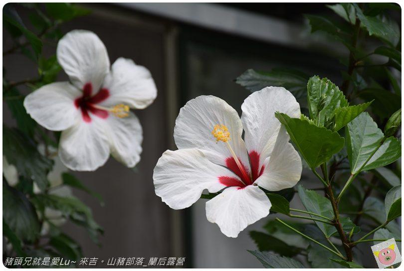 蘭后露營DSC_0108.JPG