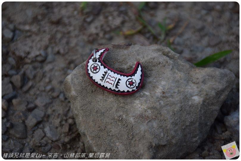 蘭后露營DSC_0601 (11).JPG