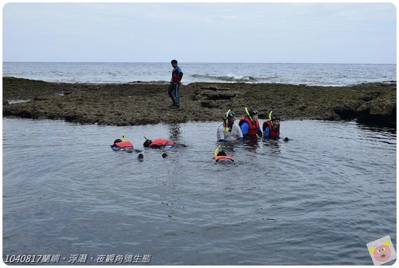 1040817蘭嶼。浮潛。夜觀角鴞生態DSC_1900.JPG