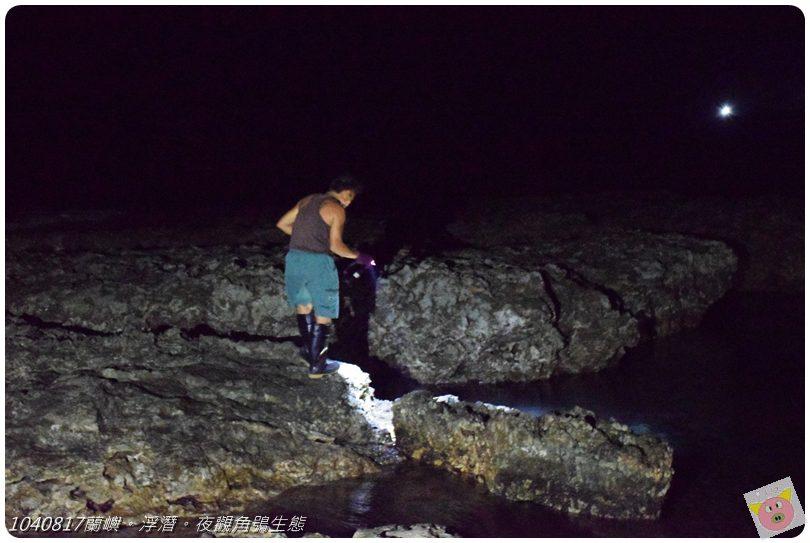 1040817蘭嶼。浮潛。夜觀角鴞生態DSC_2013.JPG