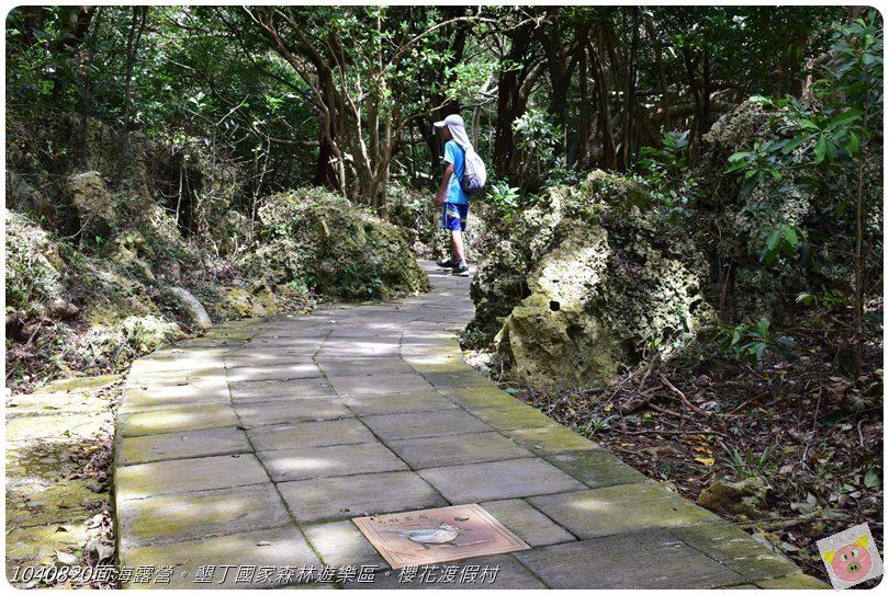 1040820面海露營。墾丁國家森林遊樂區。櫻花渡假村DSC_2718.JPG