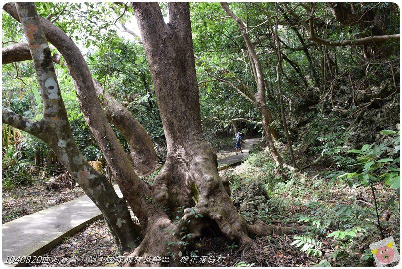 1040820面海露營。墾丁國家森林遊樂區。櫻花渡假村DSC_2759.JPG