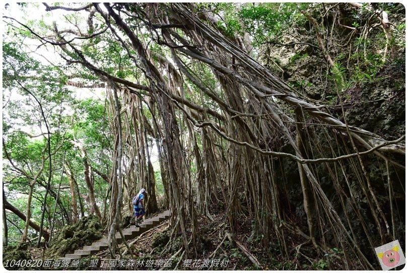1040820面海露營。墾丁國家森林遊樂區。櫻花渡假村DSC_2776.JPG