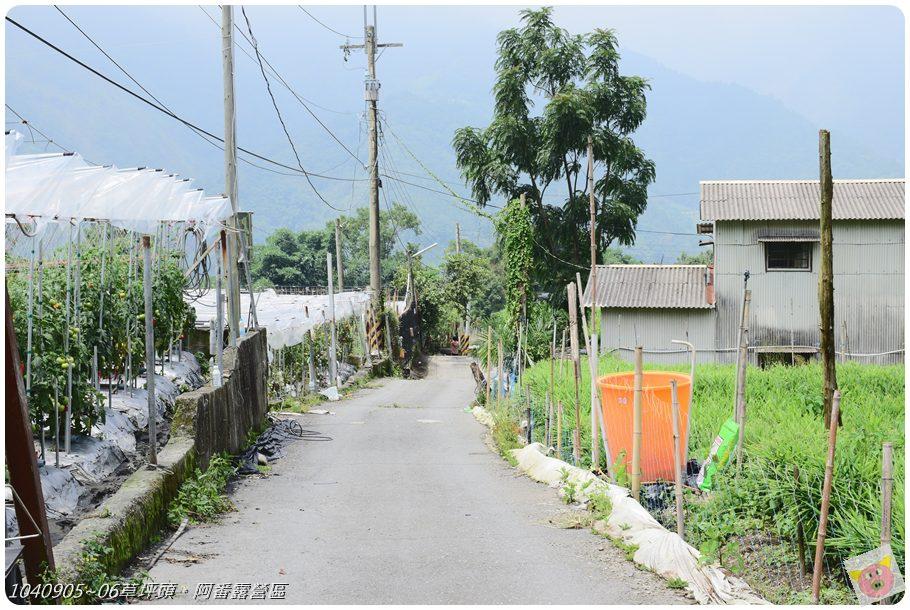 阿番露營DSC_4026.JPG
