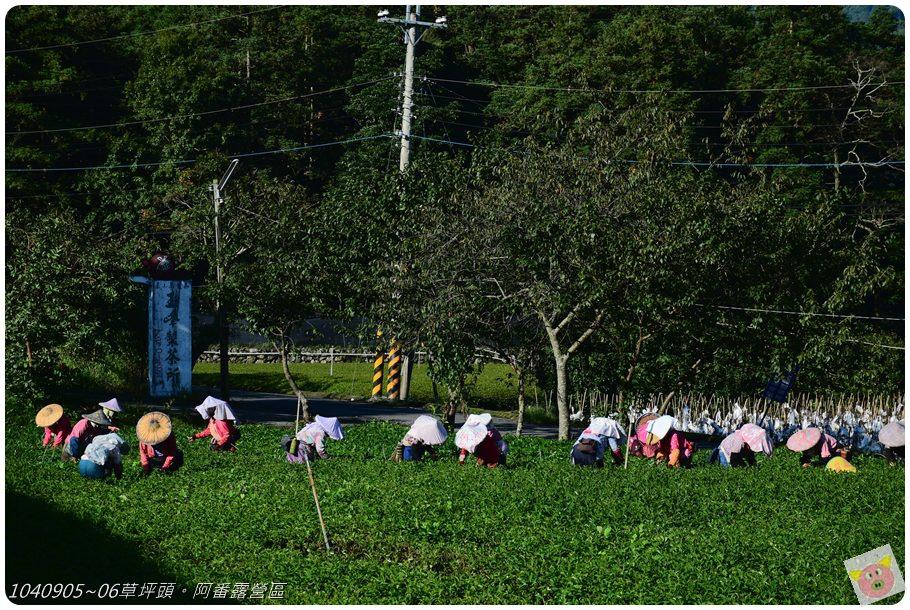 阿番露營DSC_4406.JPG