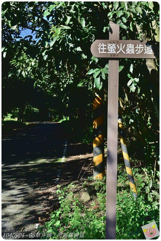 阿番露營DSC_4437.JPG