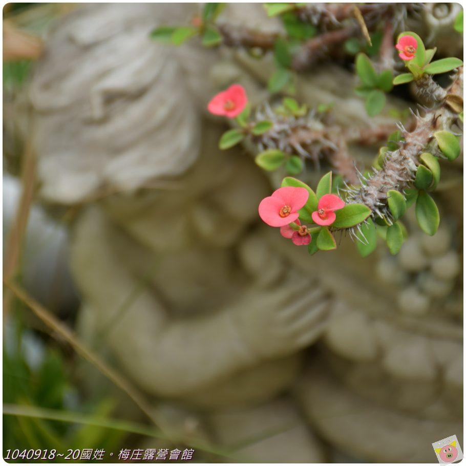 梅庄DSC_5926.JPG