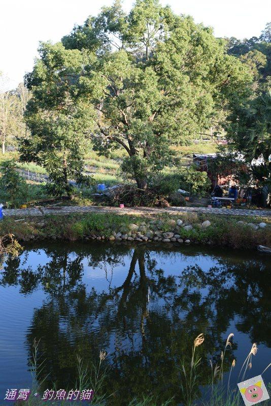釣魚的貓露營DSC_9763.JPG