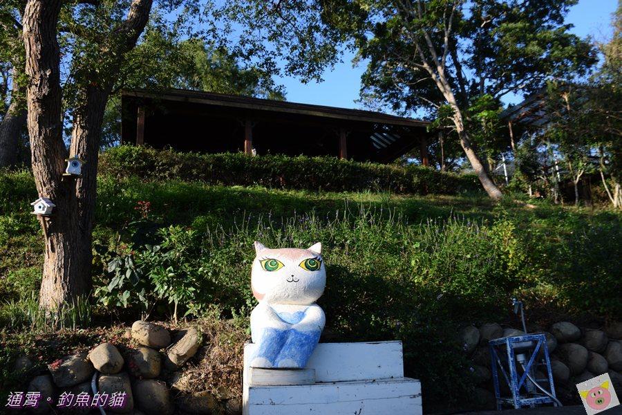 釣魚的貓露營DSC_9765.JPG