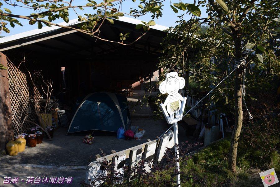 英台露營DSC_0073.JPG
