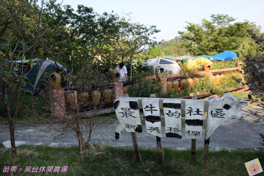 英台露營DSC_0078.JPG