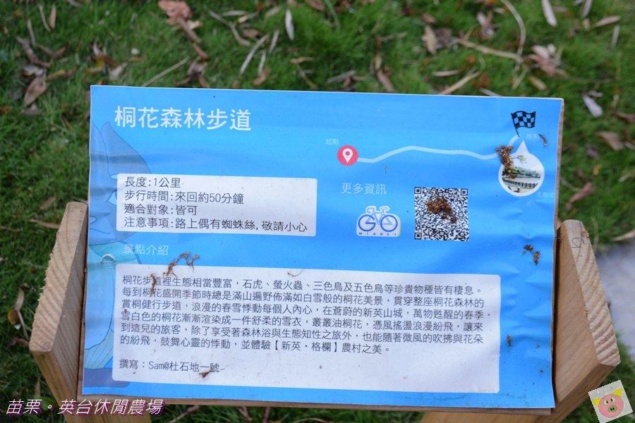 英台露營DSC_0123.JPG