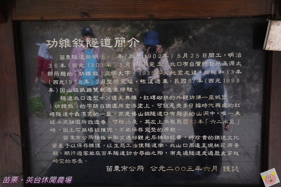 英台露營DSC_0327.JPG