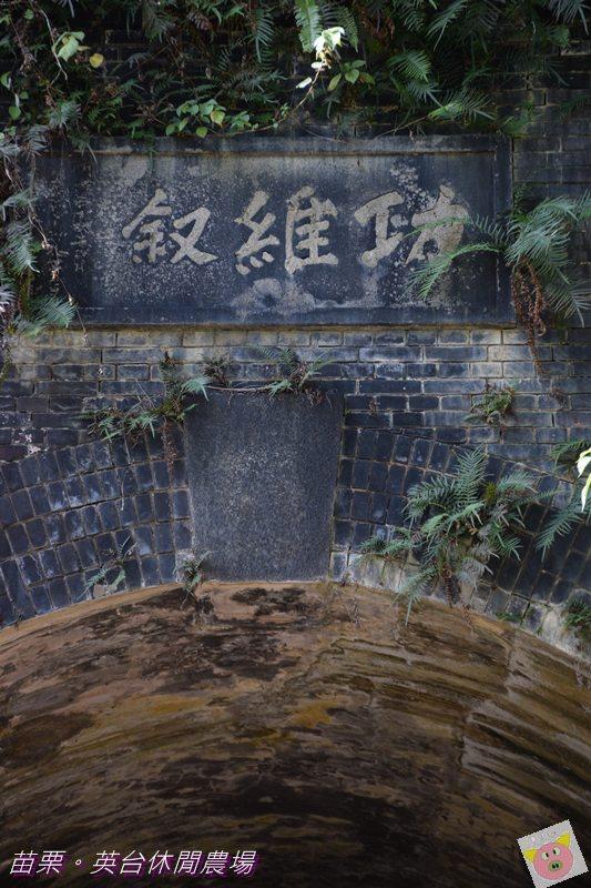 英台露營DSC_0329.JPG