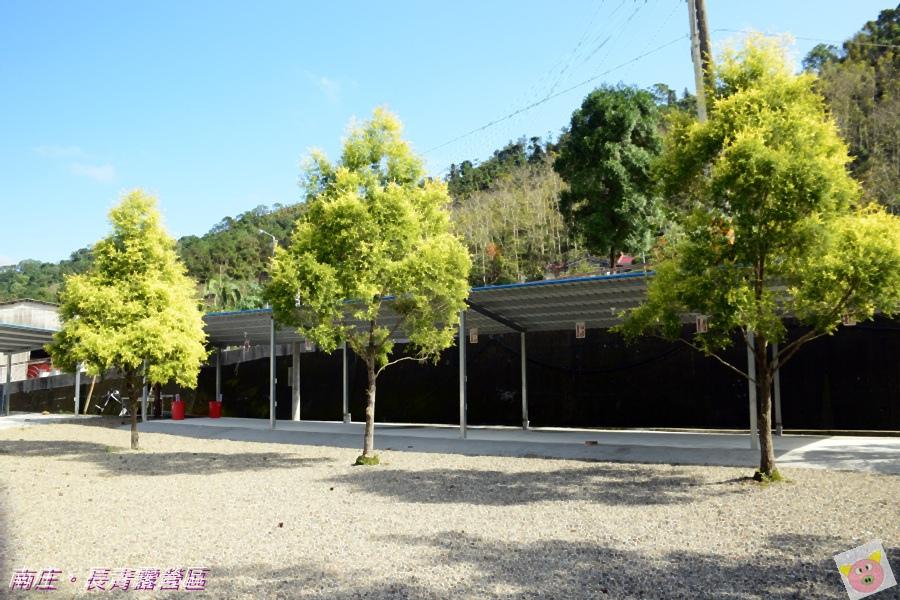 長青露營區DSC_1856.JPG