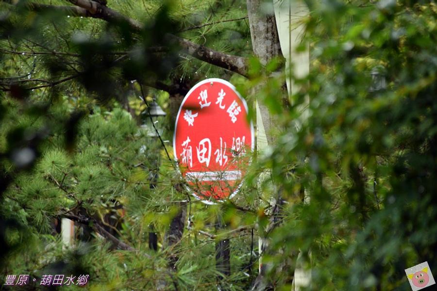 葫田水鄉DSC_2064.JPG