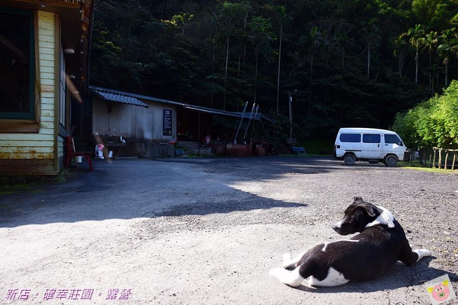 確幸莊園露營DSC_2368.JPG