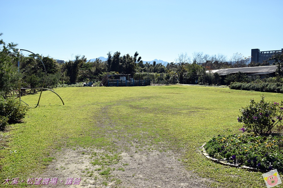 松望農場露營DSC_3123.JPG