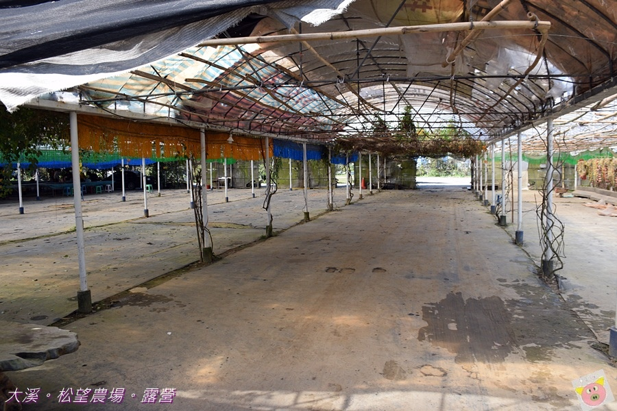 松望農場露營DSC_3124.JPG