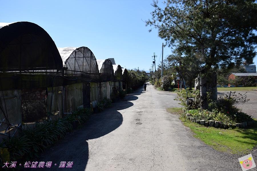 松望農場露營DSC_3130.JPG