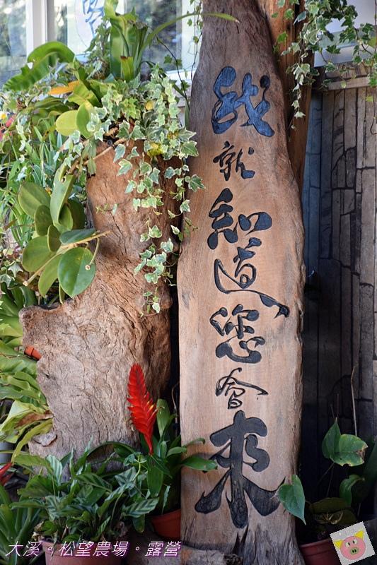 松望農場露營DSC_3152.JPG