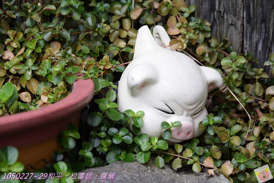 松畫居露營DSC_3809-010.JPG