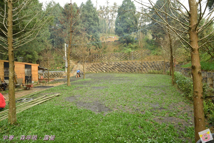 森呼吸露營DSC_6975-013.JPG