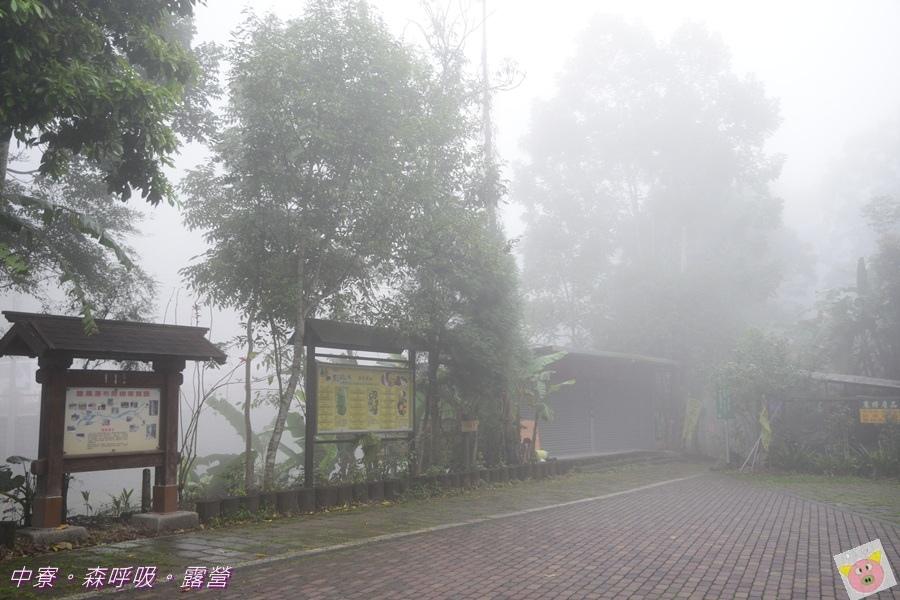森呼吸露營DSC_7232-052.JPG