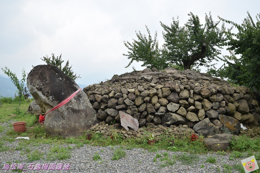 石龜梅園DSC_0193.JPG