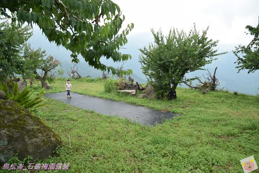 石龜梅園DSC_0196.JPG