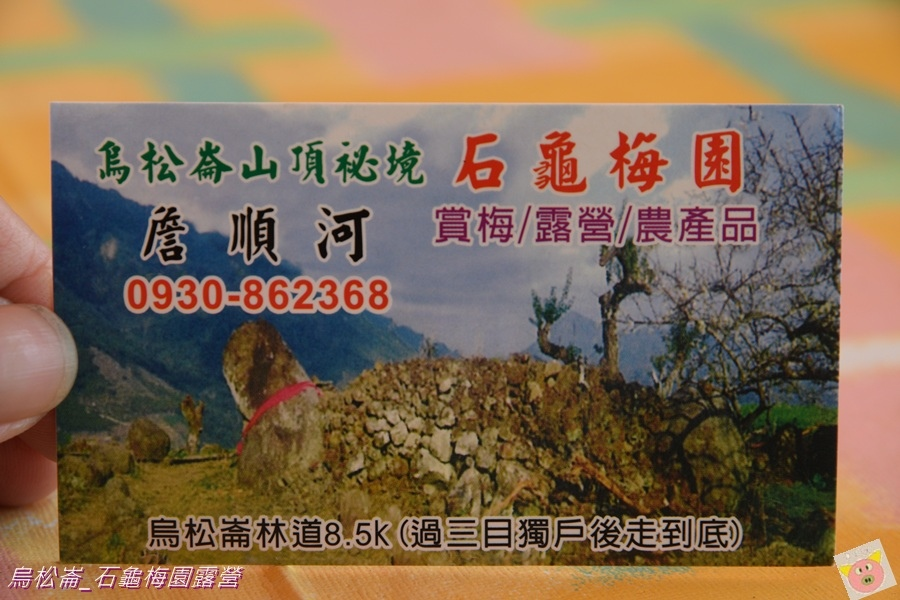 石龜梅園DSC_0225.JPG
