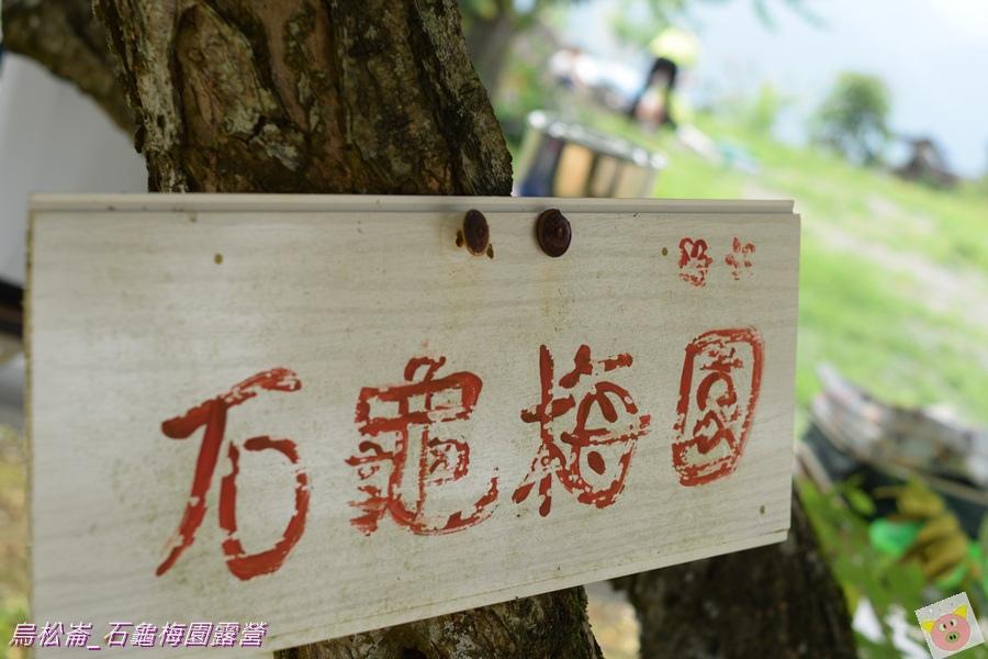 石龜梅園DSC_0295.JPG