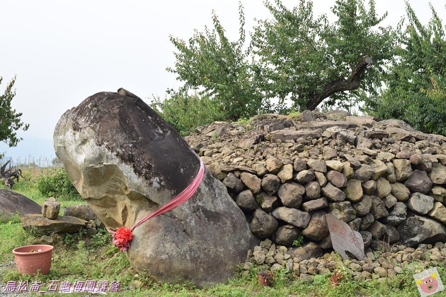 石龜梅園DSC_0296.JPG